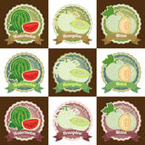 套各种各样的新鲜的瓜果子优质质量标记标签徽章贴纸和商标在传染媒介设计 免版税库存照片