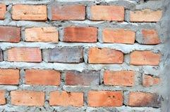 Кирпичная стена Стоковые Изображения