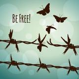 是自由的!把变成蝴蝶的铁丝网 免版税库存照片