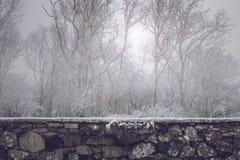 在有薄雾的冬天森林前面的美丽的老石墙 免版税图库摄影