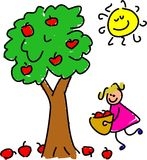 выбирать яблок Стоковое Изображение