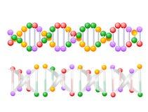 脱氧核糖核酸螺旋玻璃 库存照片
