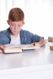 年轻男孩在书读非常集中 免版税库存照片
