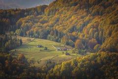 在秋天下午光的山峰 免版税库存图片