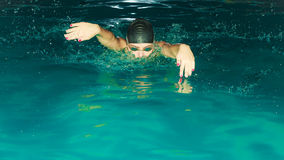 女子运动员游泳在水池的蝶泳 库存图片