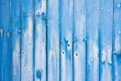 蓝色篱芭盘区 免版税图库摄影