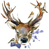 Графики футболки оленей и птиц леса иллюстрация оленей с предпосылкой выплеска текстурированной акварелью Стоковые Изображения