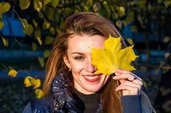 使用与下落的秋天黄色的年轻快乐的逗人喜爱的女孩妇女在公园离开在树附近,笑和微笑 库存照片