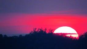 большой заход солнца Стоковое Изображение