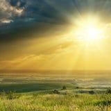 在剧烈的天空的日落在葡萄园 免版税库存图片