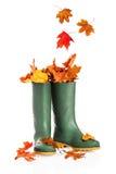 Φύλλα πτώσης στις μπότες Στοκ Εικόνες