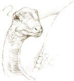 恐龙 恐龙图画铅笔剪影 免版税库存照片