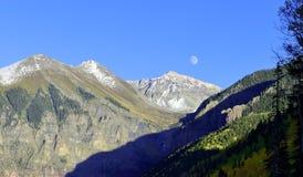 月亮、积雪的山和黄色白杨木 库存图片