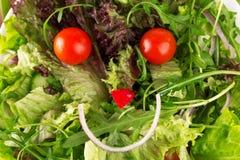 愉快的沙拉,用健康有机菜做的面孔 免版税图库摄影