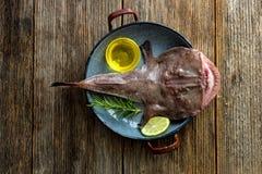 Рыбы рыболова Стоковое Изображение RF