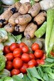 各种各样的新鲜蔬菜、蕃茄,莲花和笋 免版税库存图片