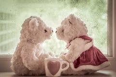 夫妇在爱的玩具熊 免版税库存图片