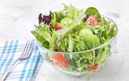 新鲜的蔬菜沙拉健康食物 免版税库存照片