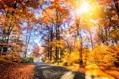 与乡下公路的秋天风景 免版税库存图片