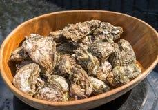 立即可食的牡蛎 免版税库存图片