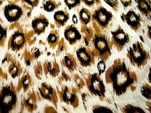 设计豹子皮肤 免版税库存图片