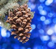 Большой конус сосны любит украшение к карточке праздника Стоковые Изображения