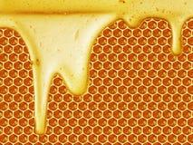 在蜂窝背景的蜂蜜水滴 免版税库存图片
