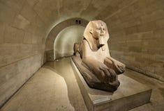 在博物馆天窗的狮身人面象 库存图片