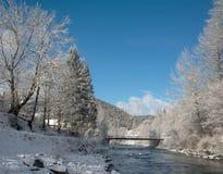 与蓝色河的冬天风景 免版税库存照片
