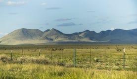 Широкий ландшафт большого национального парка загиба Стоковая Фотография RF