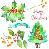 汇集(设置)与装饰的水彩花卉圣诞节元素 免版税库存照片