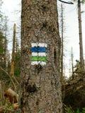 在山的供徒步旅行的小道标志 免版税图库摄影