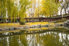亚洲中国,北京,中山公园,秋天风景 免版税库存照片