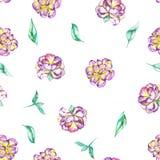 与水彩紫色和黄色异乎寻常的花(牡丹)和绿色叶子的一个无缝的花卉样式 免版税库存图片