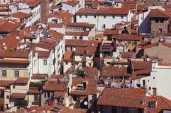 在屋顶的生活 免版税库存照片