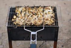 许多鸡烘烤肉片用在格栅的葱 免版税库存图片