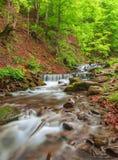 Πέφτοντας απότομα καταρράκτης στο δάσος Στοκ φωτογραφίες με δικαίωμα ελεύθερης χρήσης