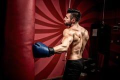 Профессиональные мужские бой и тренировка боксера в спортзале Сильные, мышечные тренировка человека и бокс Стоковые Изображения RF