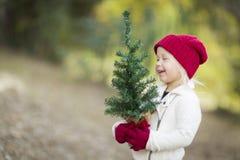Κοριτσάκι στα κόκκινα γάντια και το μικρό χριστουγεννιάτικο δέντρο εκμετάλλευσης ΚΑΠ Στοκ φωτογραφία με δικαίωμα ελεύθερης χρήσης