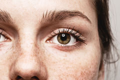 注视与健康皮肤的妇女年轻美丽的雀斑妇女面孔画象 免版税库存图片