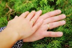 恋人在森林里结合握手 库存照片