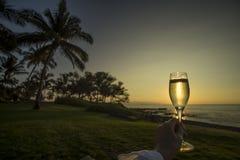Тропическая здравица захода солнца Стоковая Фотография RF