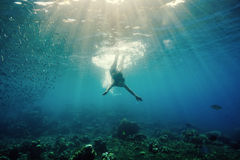 蓝色颜色虚拟水下的视图 库存图片