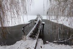 在冬天池塘的美丽如画的桥梁 免版税库存图片