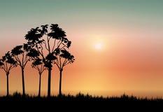 非洲背景 免版税图库摄影