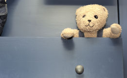 Медведь плюша вставляя из дрессера Стоковые Фото