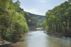 瓜达卢佩河在春天期间的得克萨斯小山国家 库存图片