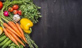 五颜六色各种各样在一个木箱的有机农厂菜在边界,地方文本的木土气背景顶视图关闭 免版税库存图片