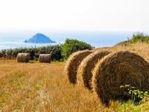 秸杆在领域的干草捆在收获以后 免版税库存照片