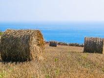 秸杆在领域的干草捆在收获以后 免版税图库摄影